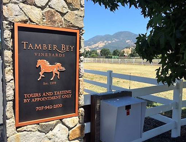 Tamber Bey Vineyards in California